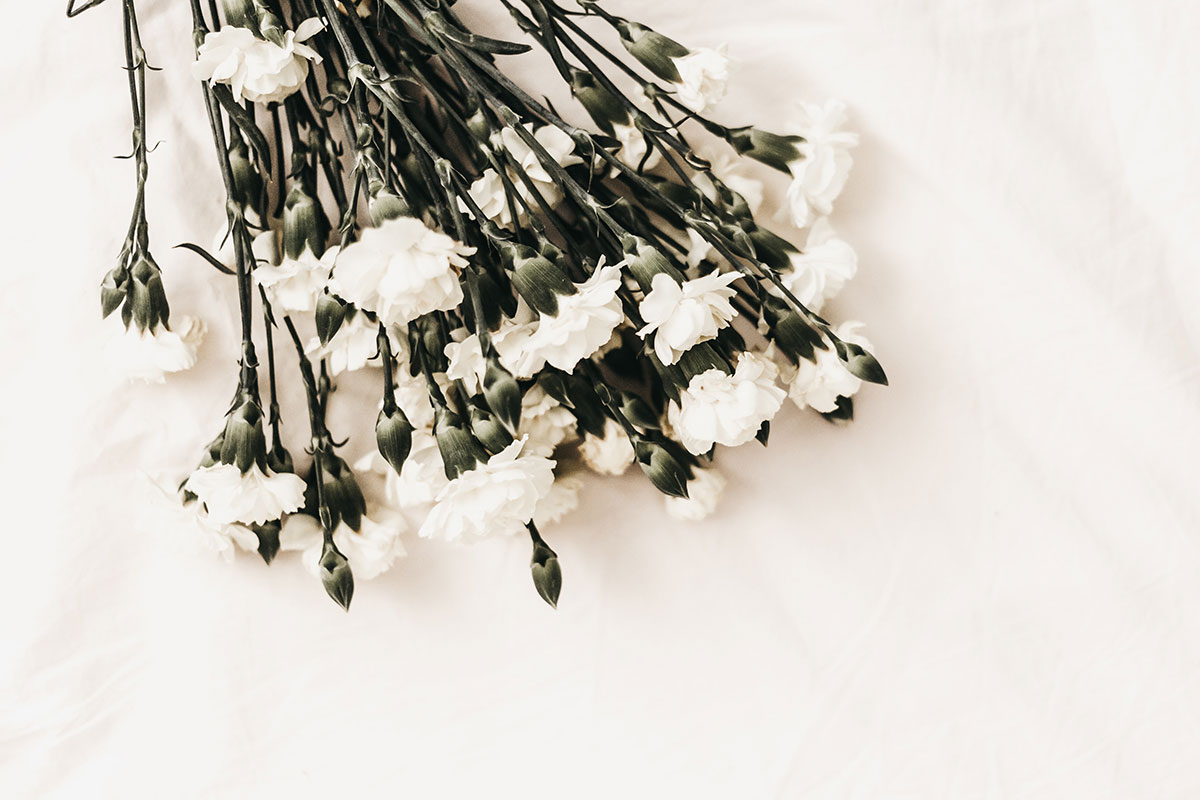 Affordable Funeral Services in Sydney | Lady Anne Funerals